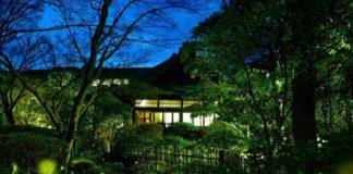 đom đóm đẹp nhất tại Osaka